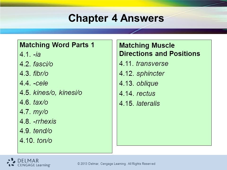Chapter 4 Answers Matching Word Parts 1 4.1. -ia 4.2. fasci/o
