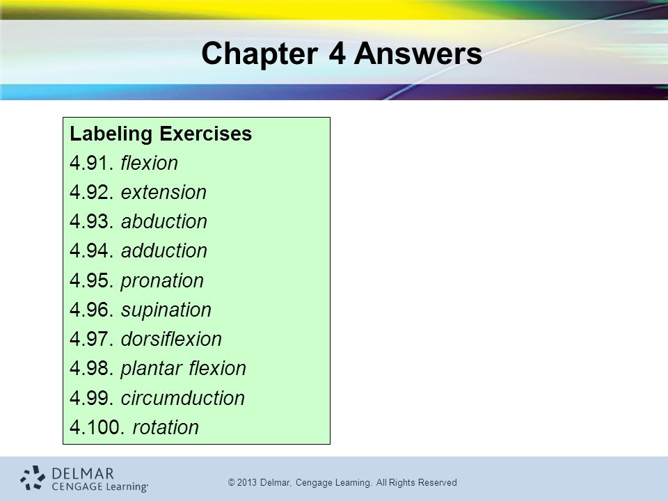 Chapter 4 Answers Labeling Exercises 4.91. flexion 4.92. extension