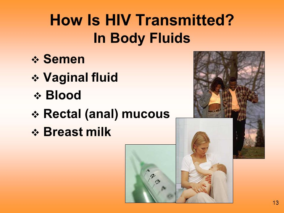 How Is HIV Transmitted In Body Fluids