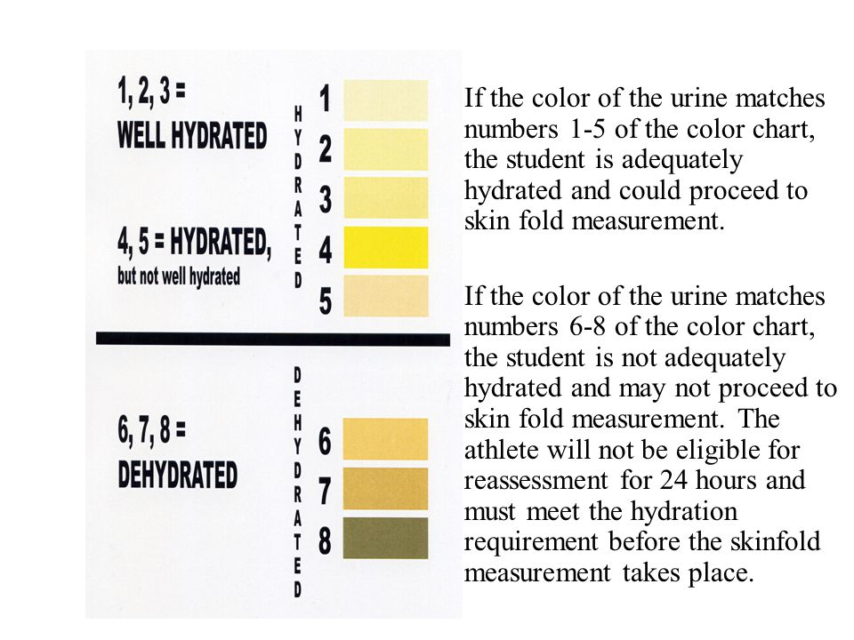 If the color of the urine matches numbers 1-5 of the color chart, the student is adequately hydrated and could proceed to skin fold measurement.