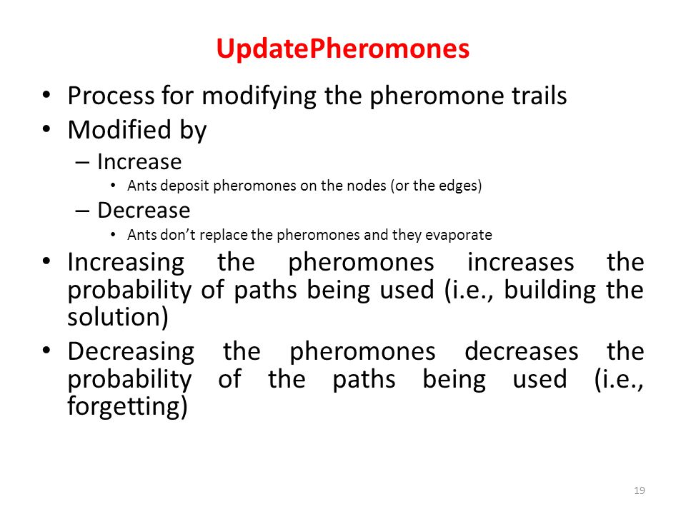 UpdatePheromones Process for modifying the pheromone trails