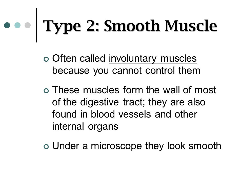 Type 2: Smooth Muscle Often called involuntary muscles because you cannot control them.