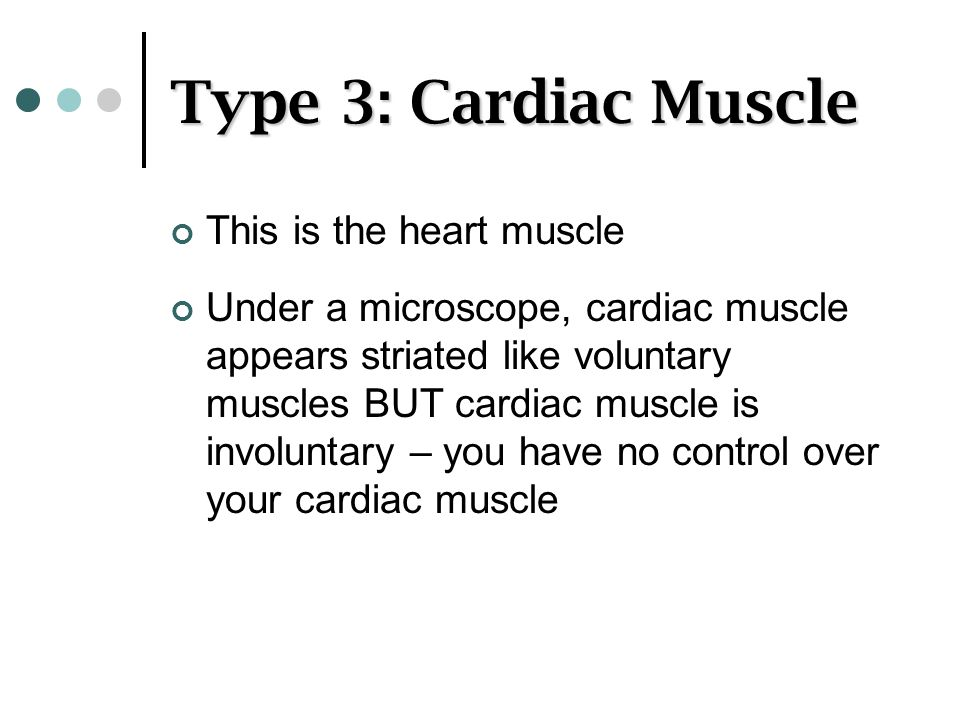 Type 3: Cardiac Muscle This is the heart muscle