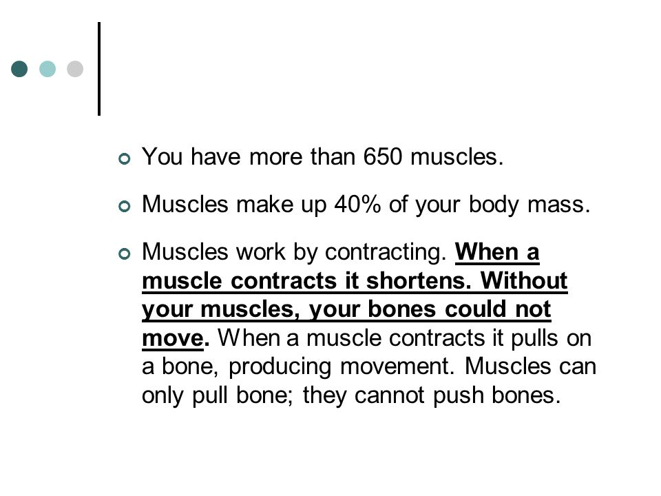 You have more than 650 muscles.