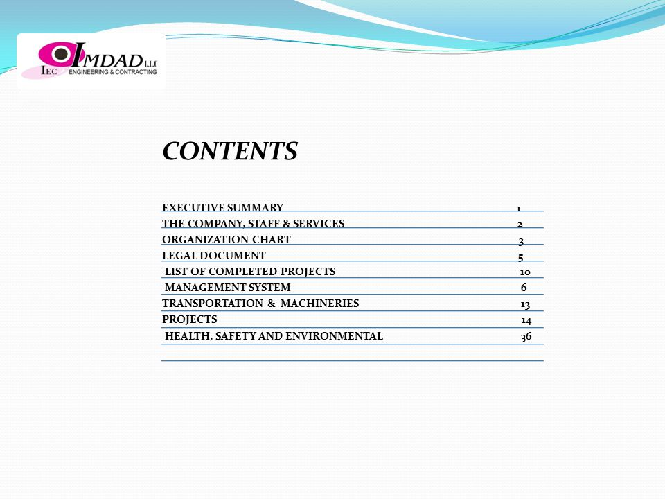 CONTENTS EXECUTIVE SUMMARY 1 THE COMPANY, STAFF & SERVICES 2