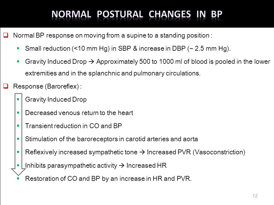 Normal Postural Changes in BP