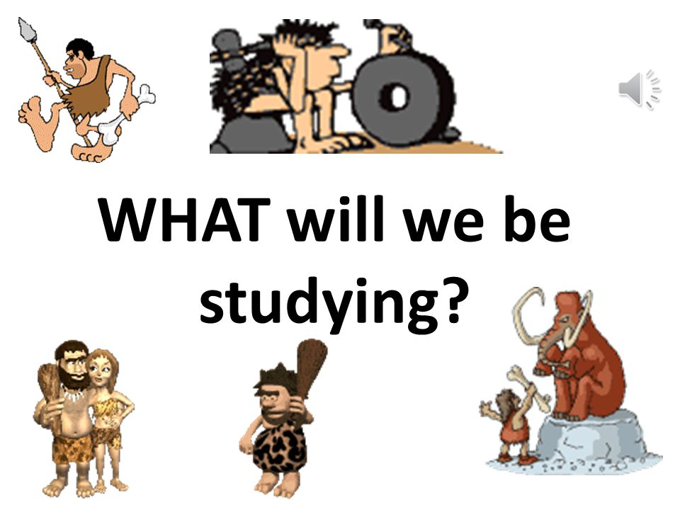 WHAT will we be studying