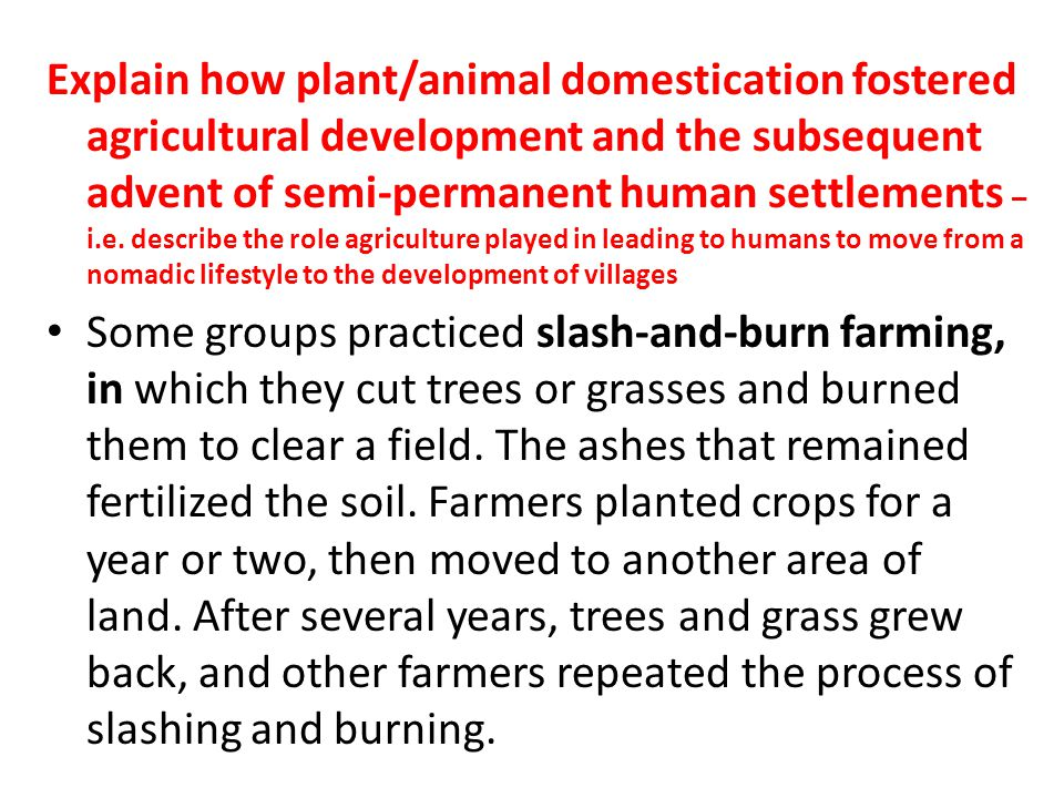 Explain how plant/animal domestication fostered agricultural development and the subsequent advent of semi-permanent human settlements – i.e. describe the role agriculture played in leading to humans to move from a nomadic lifestyle to the development of villages