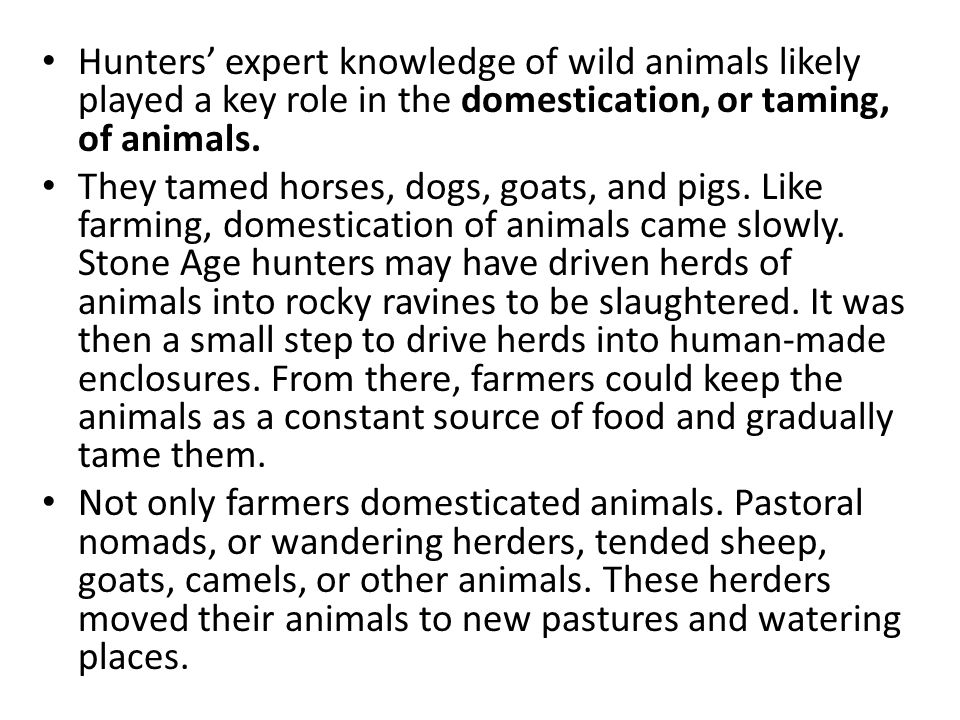 Hunters' expert knowledge of wild animals likely played a key role in the domestication, or taming, of animals.