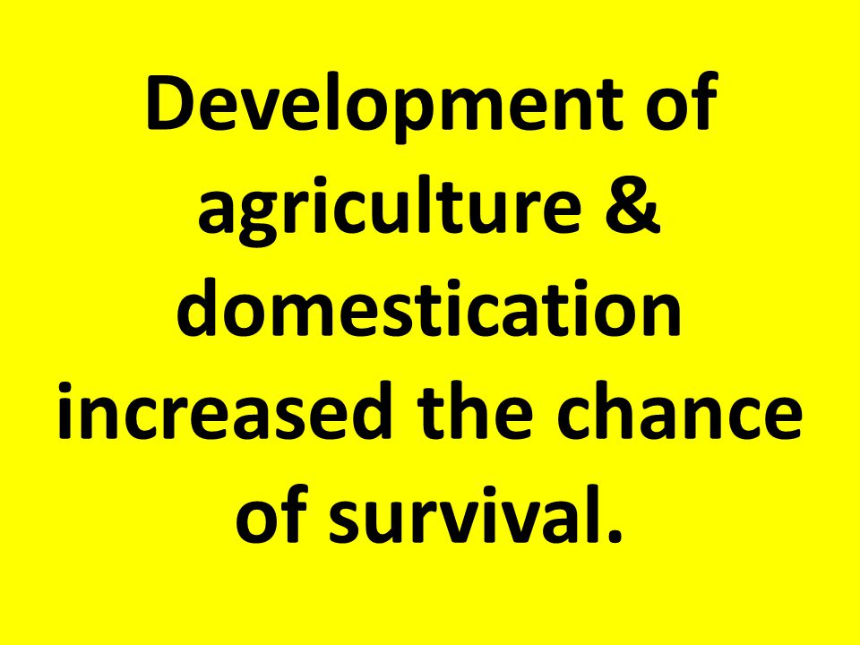 Development of agriculture & domestication increased the chance of survival.