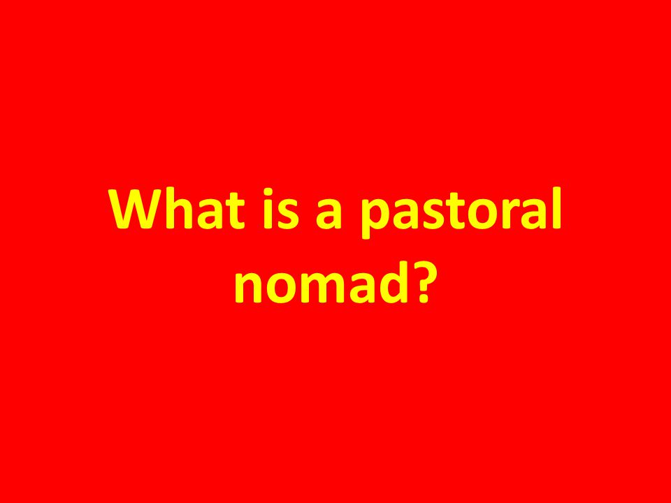 What is a pastoral nomad