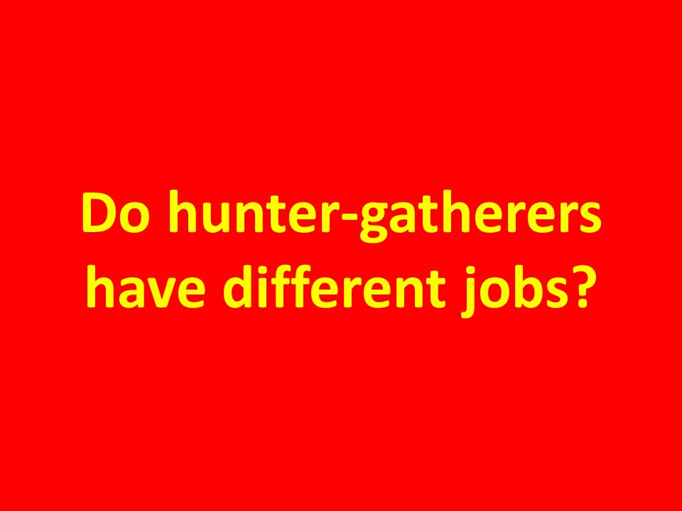 Do hunter-gatherers have different jobs