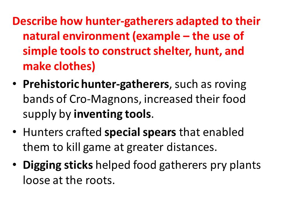 Describe how hunter-gatherers adapted to their natural environment (example – the use of simple tools to construct shelter, hunt, and make clothes)