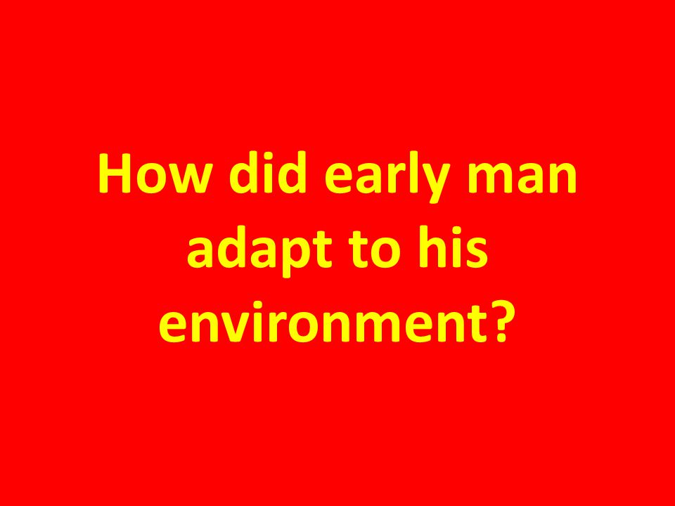 How did early man adapt to his environment