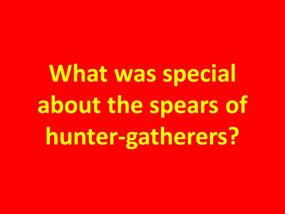 What was special about the spears of hunter-gatherers