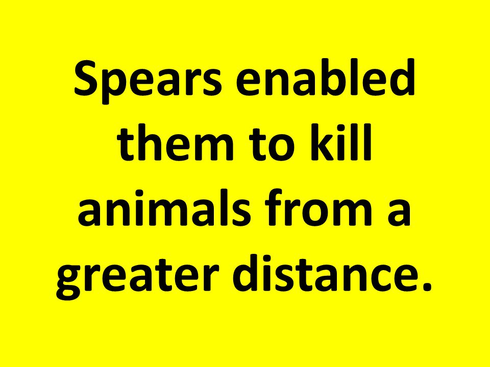 Spears enabled them to kill animals from a greater distance.