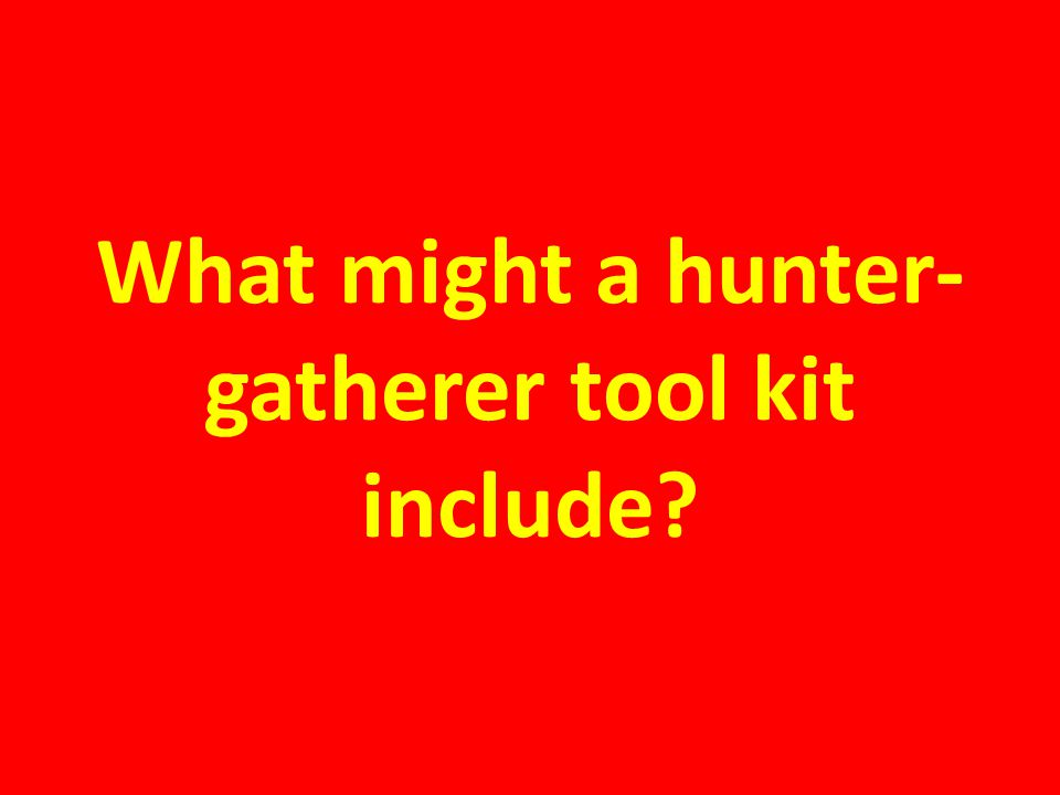What might a hunter-gatherer tool kit include
