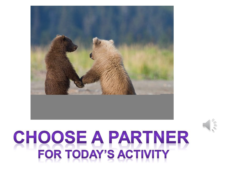 Choose a partner For today's activity