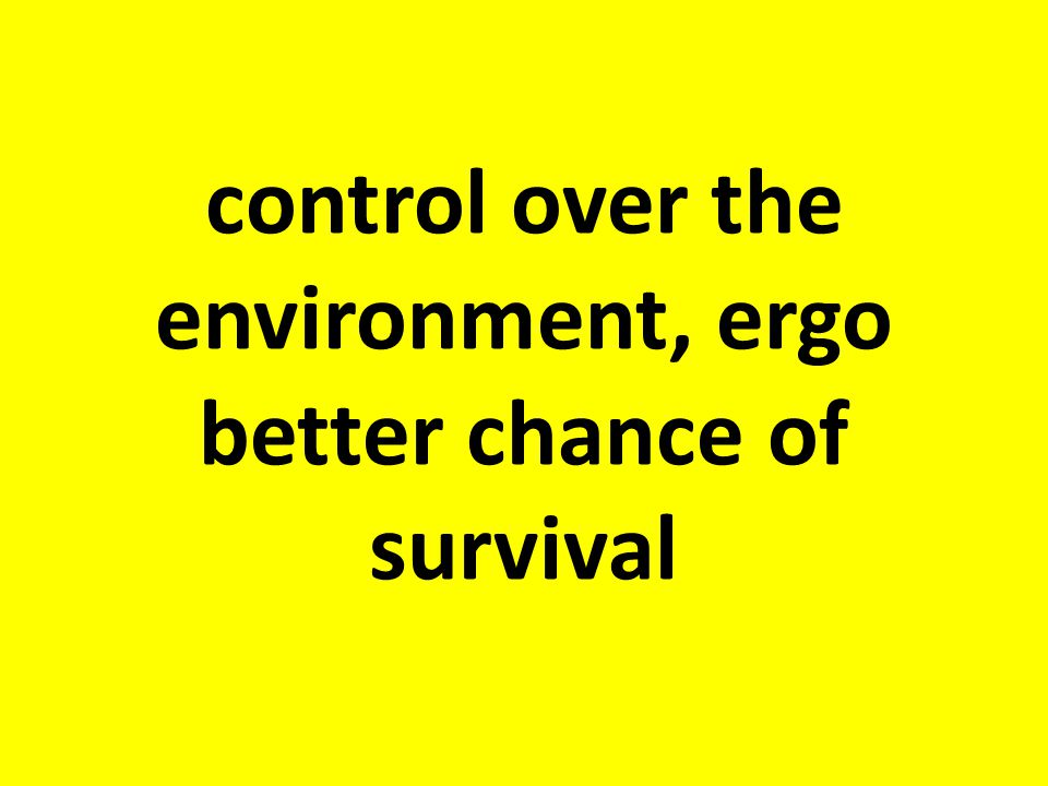 control over the environment, ergo better chance of survival