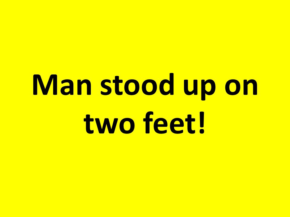 Man stood up on two feet!