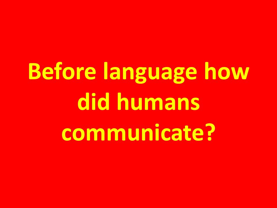 Before language how did humans communicate