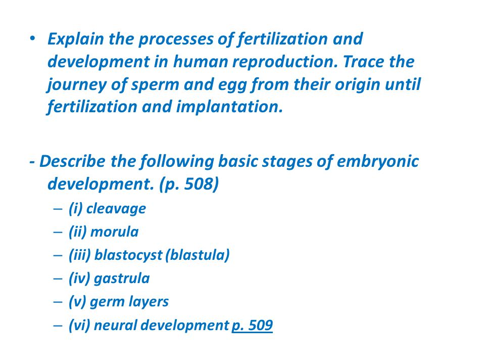 Explain the processes of fertilization and development in human reproduction. Trace the journey of sperm and egg from their origin until fertilization and implantation.