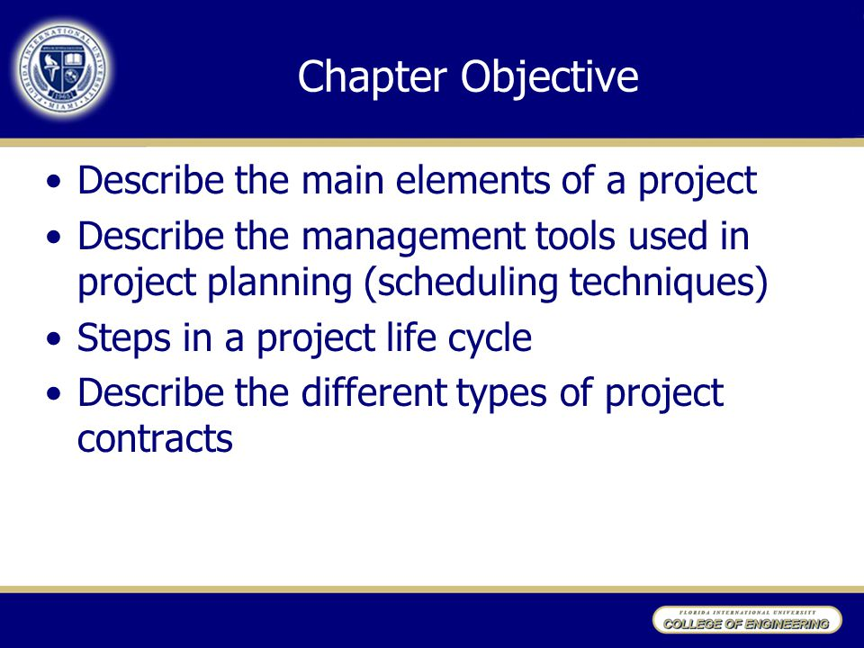 Chapter Objective Describe the main elements of a project