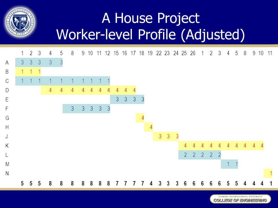 A House Project Worker-level Profile (Adjusted)