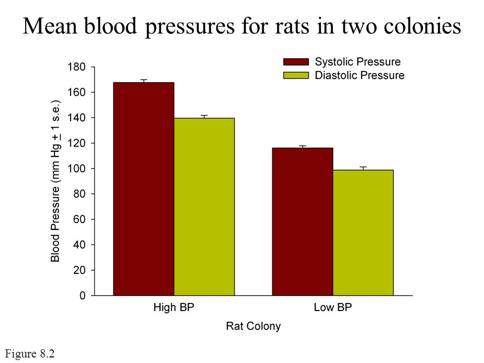Mean blood pressures for rats in two colonies