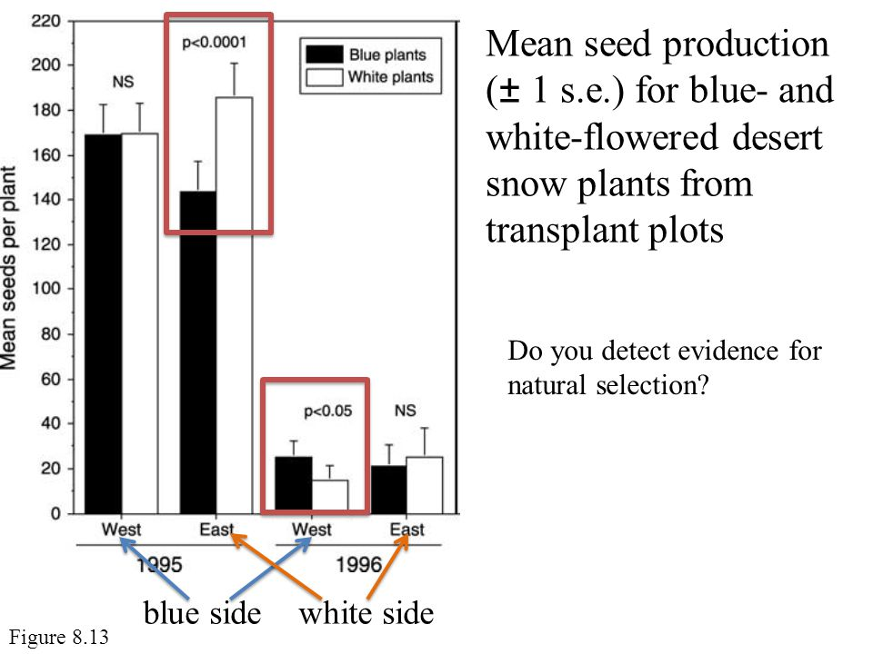 Mean seed production (± 1 s. e