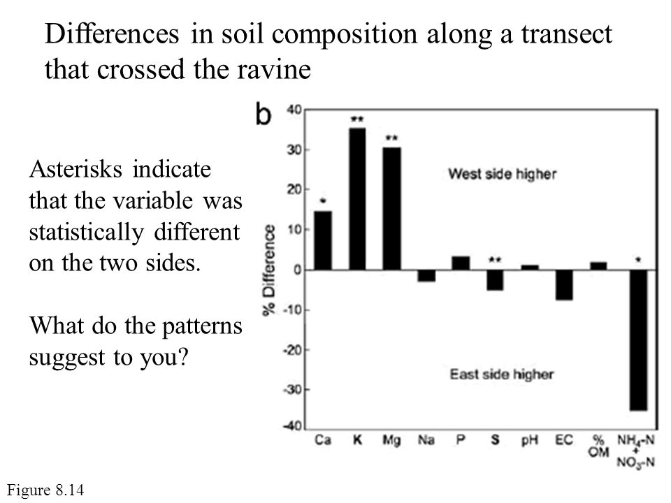 Differences in soil composition along a transect that crossed the ravine