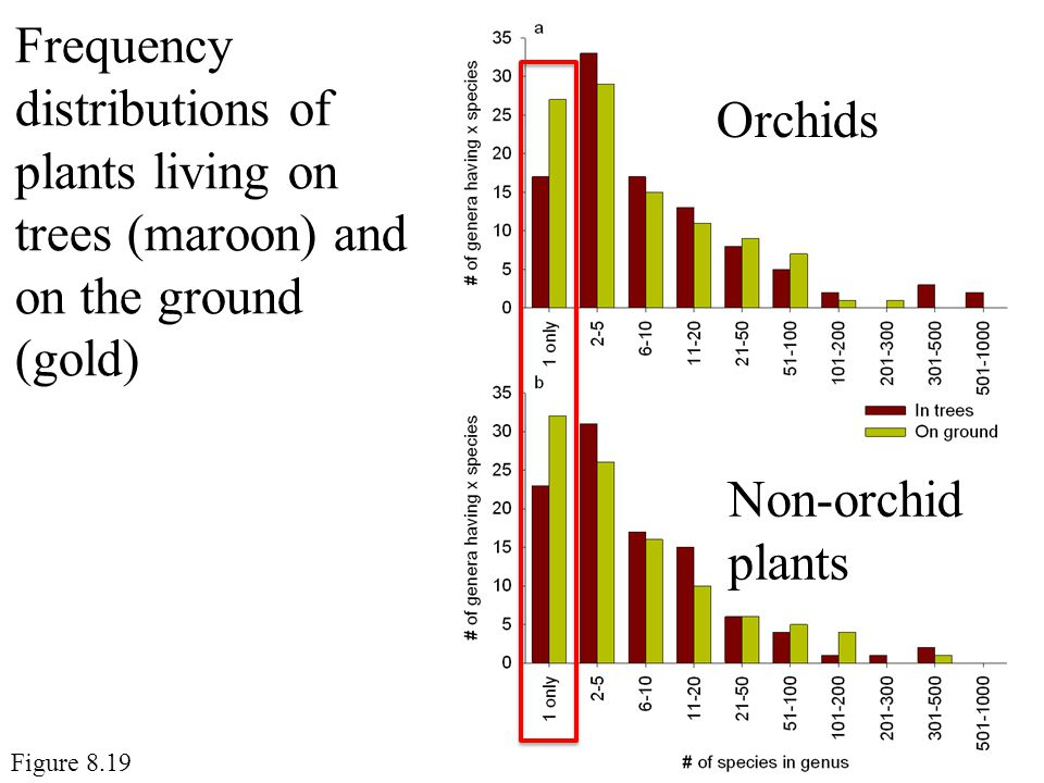 Frequency distributions of plants living on trees (maroon) and on the ground (gold)