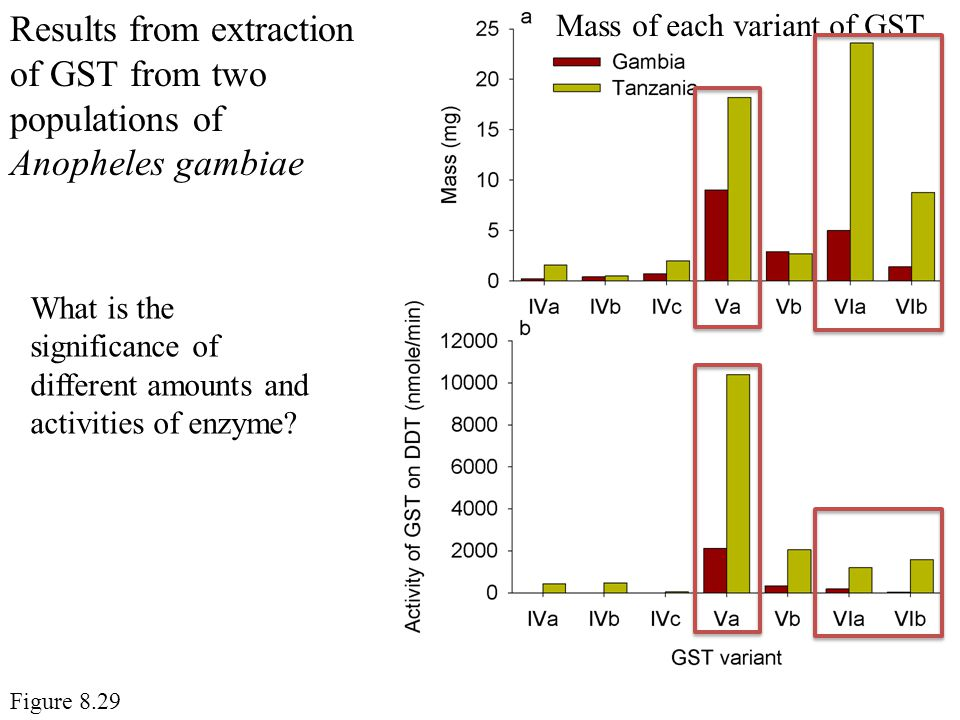 Results from extraction of GST from two populations of Anopheles gambiae