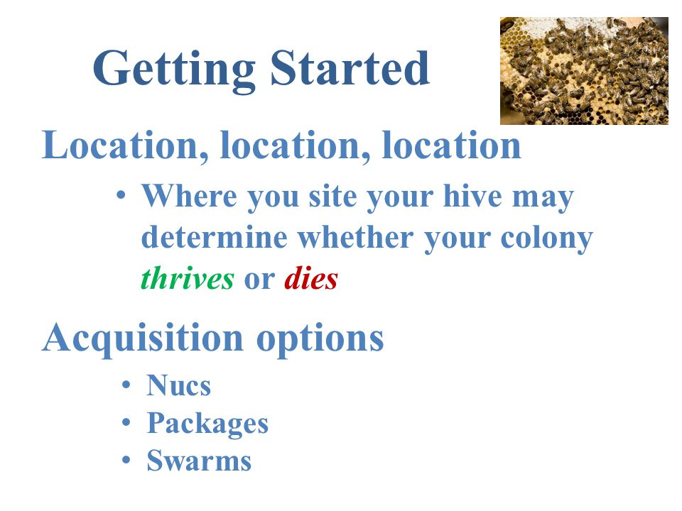 Getting Started Location, location, location Acquisition options