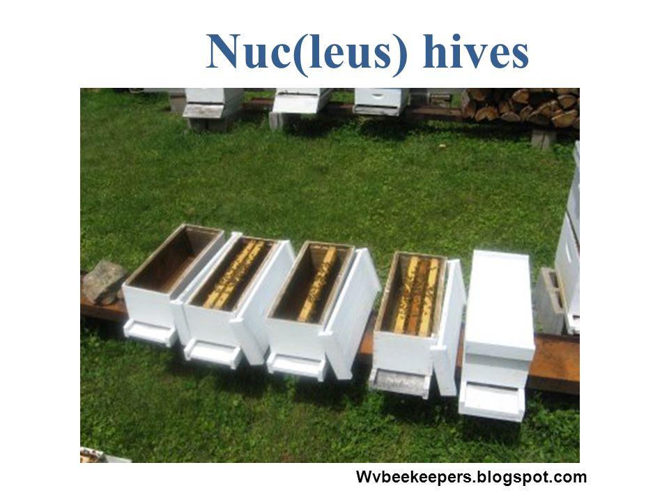 Nuc(leus) hives Wvbeekeepers.blogspot.com