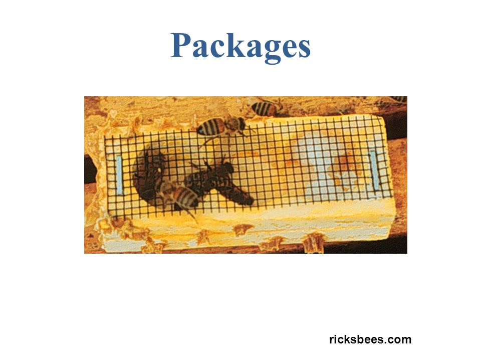 Packages ricksbees.com