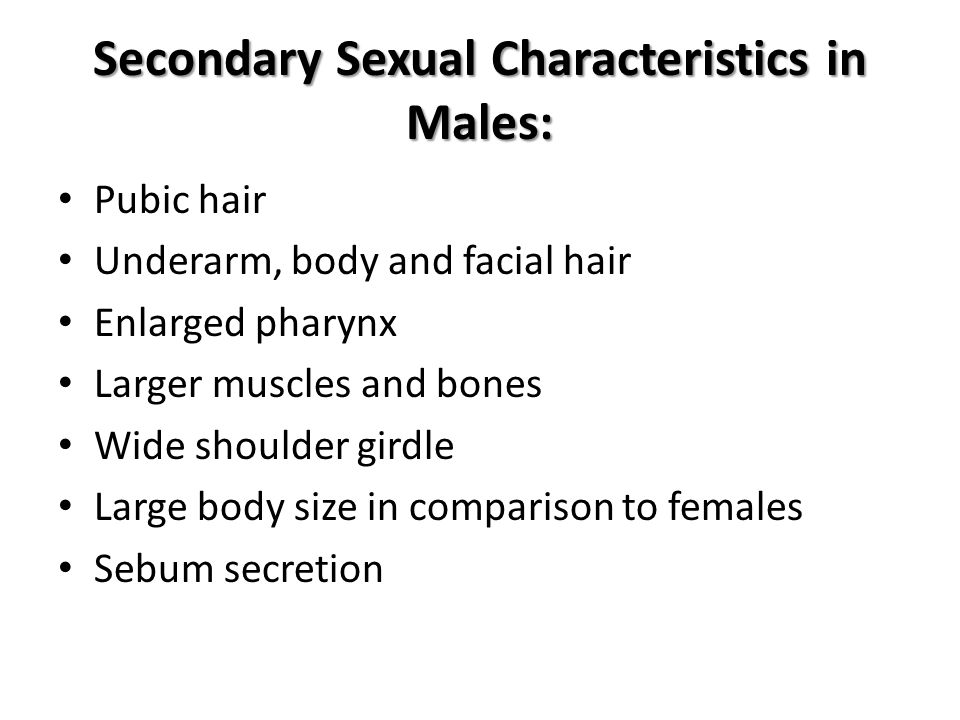 Secondary Sexual Characteristics in Males: