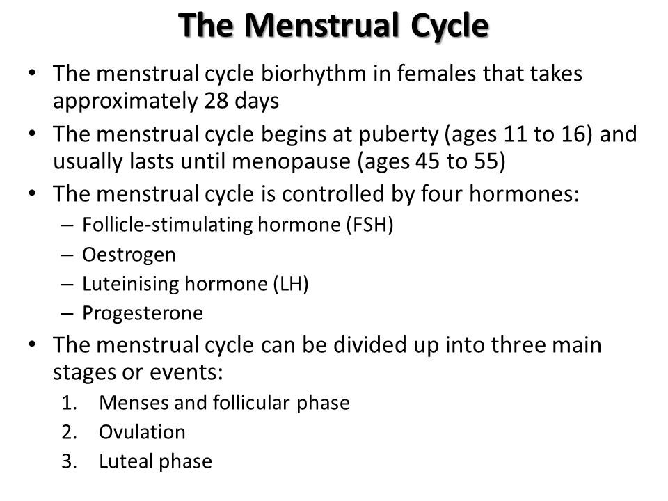 The Menstrual Cycle The menstrual cycle biorhythm in females that takes approximately 28 days.