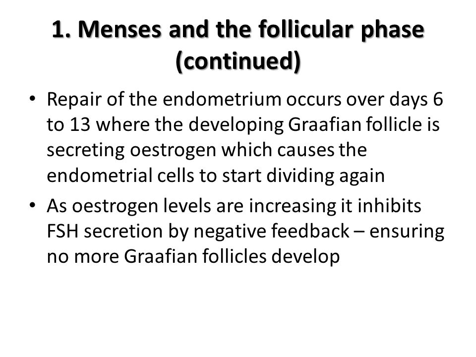 1. Menses and the follicular phase (continued)