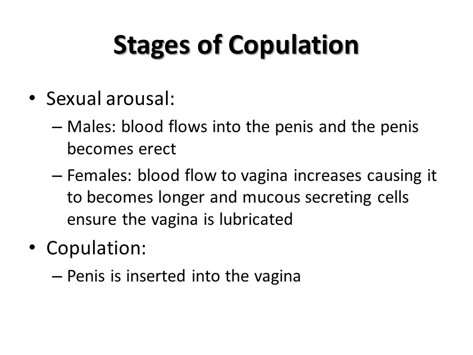 Stages of Copulation Sexual arousal: Copulation: