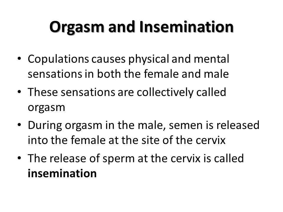 Orgasm and Insemination