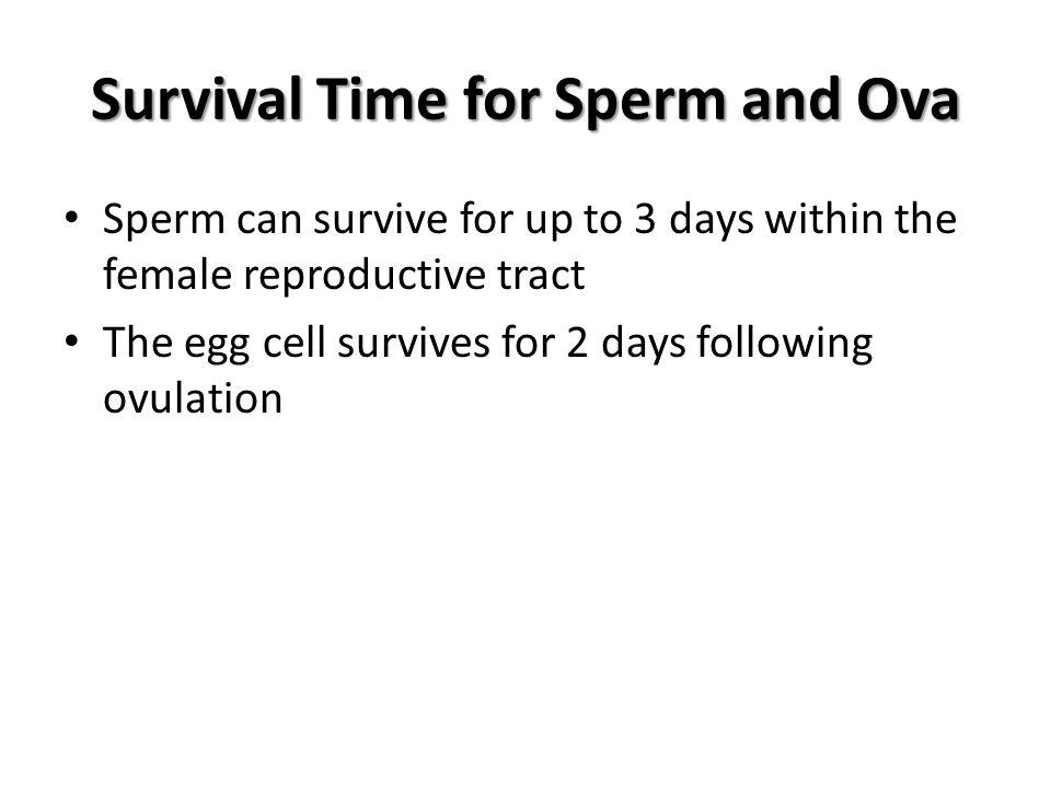 Survival Time for Sperm and Ova