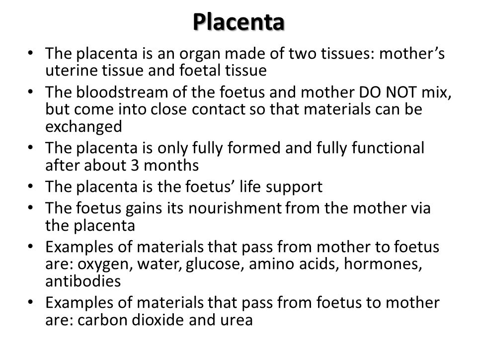 Placenta The placenta is an organ made of two tissues: mother's uterine tissue and foetal tissue.