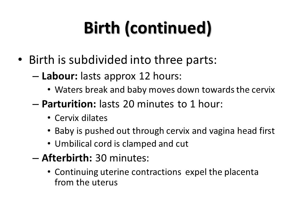 Birth (continued) Birth is subdivided into three parts: