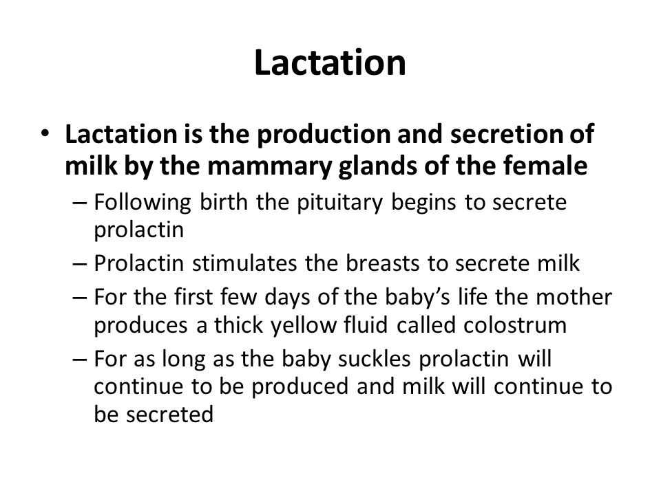 Lactation Lactation is the production and secretion of milk by the mammary glands of the female.