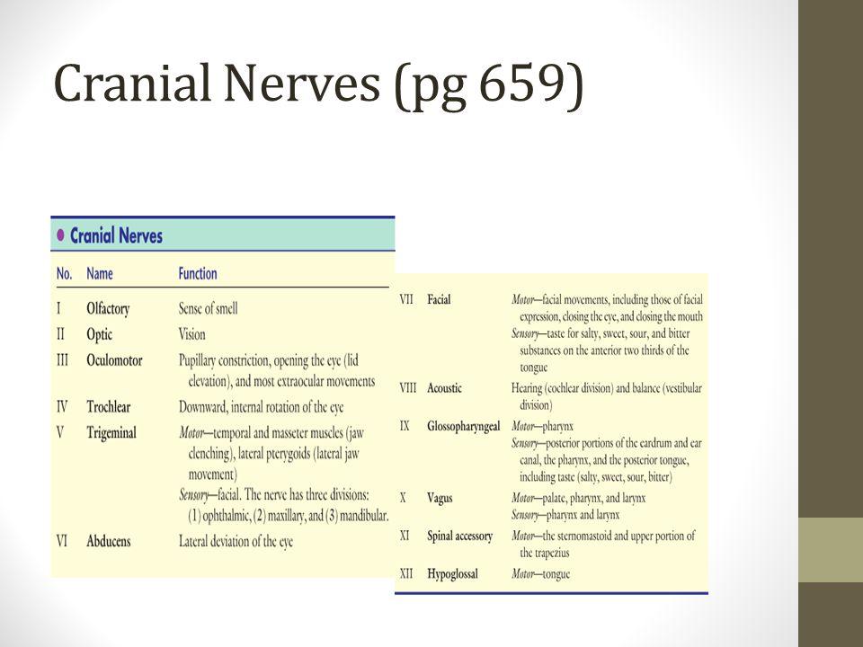 Cranial Nerves (pg 659)