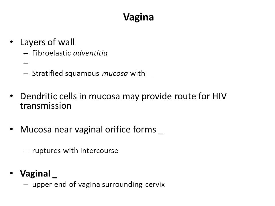 Vagina Layers of wall. Fibroelastic adventitia. Stratified squamous mucosa with _.