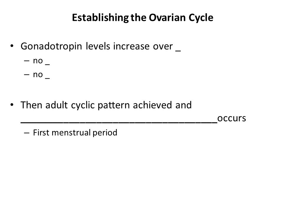 Establishing the Ovarian Cycle