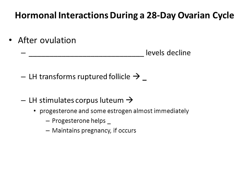 Hormonal Interactions During a 28-Day Ovarian Cycle