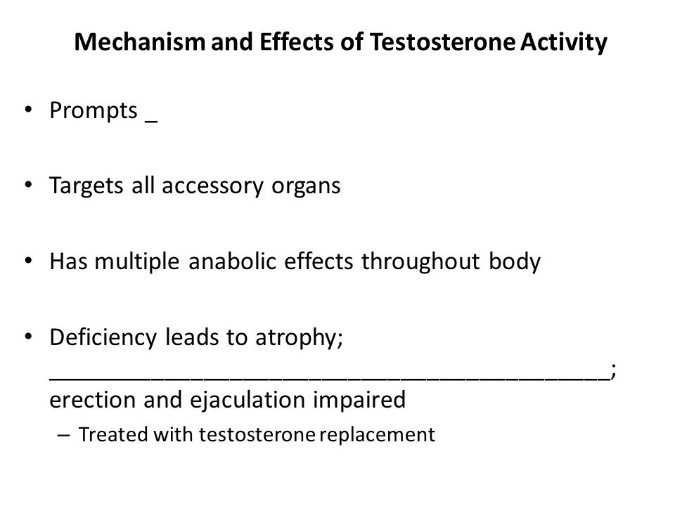 Mechanism and Effects of Testosterone Activity